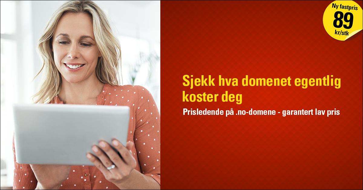 Med prissjekken til Loopia ser du hva et .no-domenenavn egentlig koster. Vi gir deg også oversikten på åpningstidene til supportavdelingene og hvordan du kan kontakte dem. Det er alle de ledende aktørene i det norske domenemarkedet som dekkes i prissjekken.